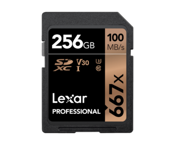 256GB SDXC CLS10 UHS-I 100MB/s citire, 90MB/s scriere